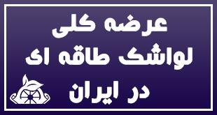 عرضه کلی لواشک طاقه ای در ایران 1